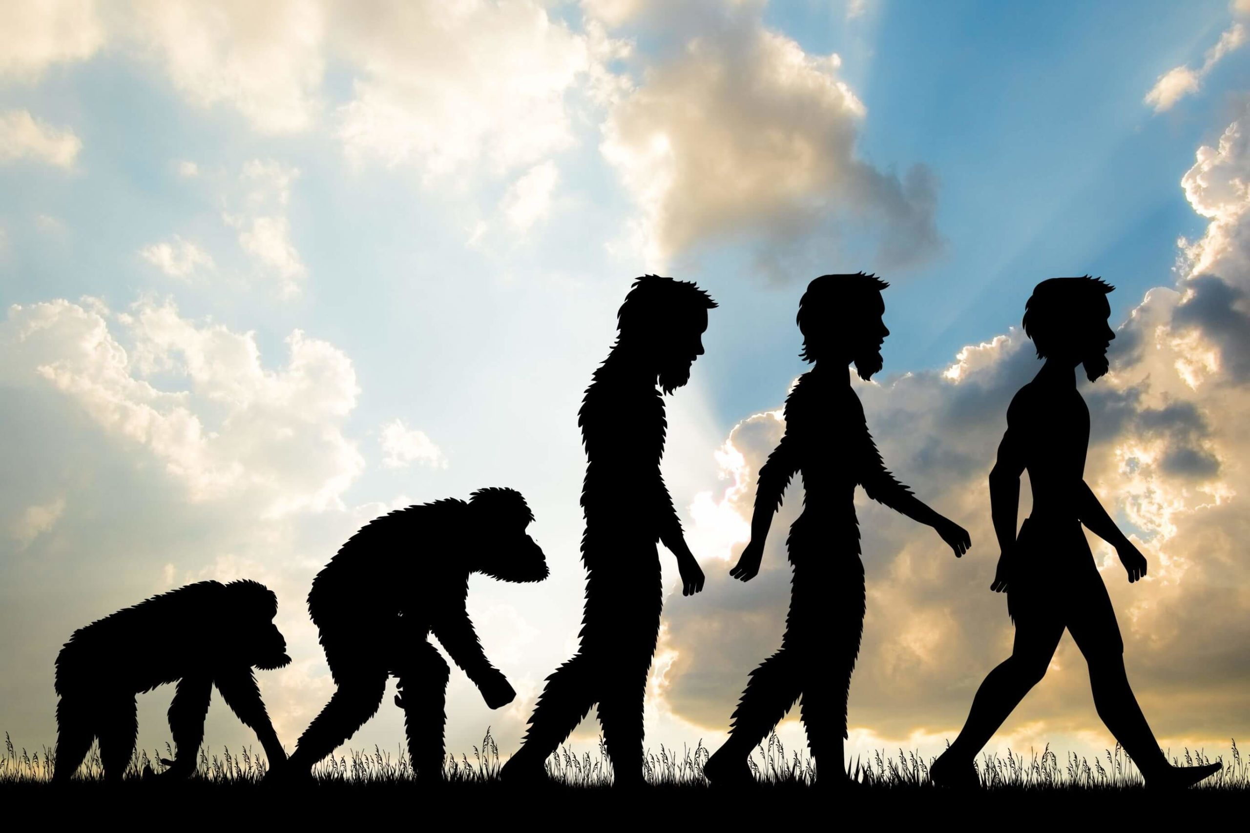 ¿Qué tengo que creer respecto de la teoría de la evolución - Formación Cristiana